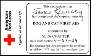 Pet CPR card front