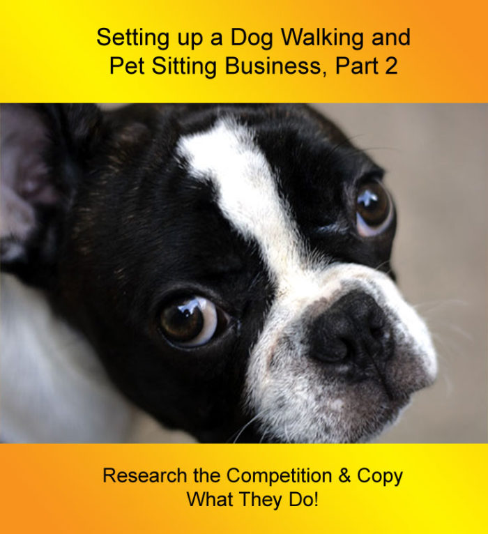 Setting up a Dog Walking Business: research the competition