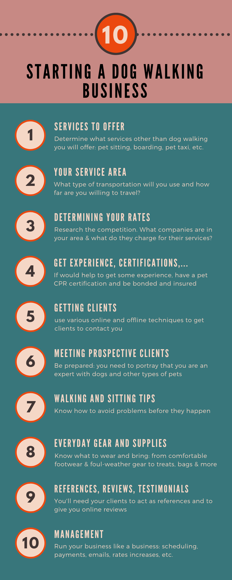 How to start a dog walking business inforgraphic