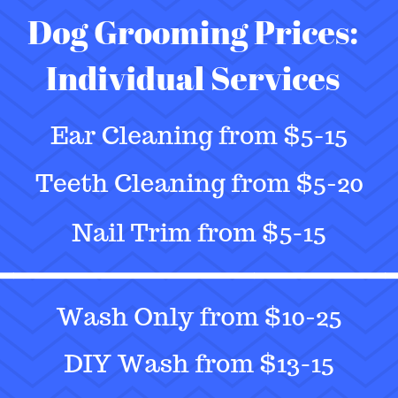 Dog grooming prices: individual services