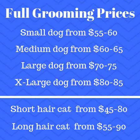 Full dog and cat grooming prices
