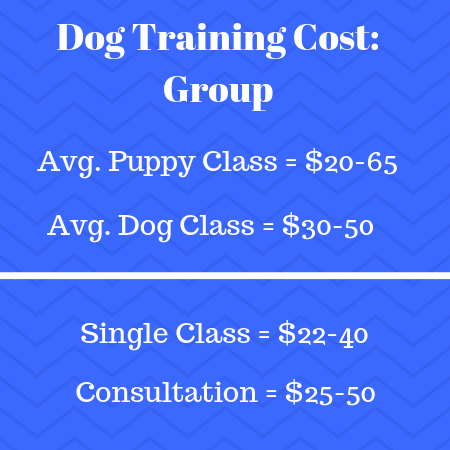Group Dog Training Cost