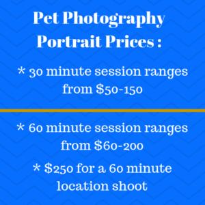 Pet Photography Portrait Prices