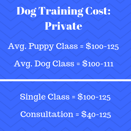 Dog Obedience School Training Cost Philadelphia, PA | Fairmount Pet