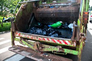 Be mindful when walking your dog on trash day