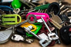 Pet sitting keys: just give us a spare set.