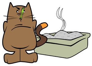 Have enough cat litter and pet food while you are away