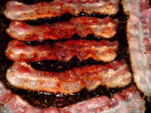 Worst dog names: Bacon Bits