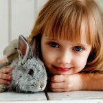 Rabbit Pet Sitting (Guide & Tips)